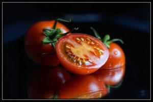 Tomato Plant Tobacco Mosaic Virus